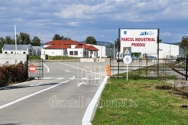CJD vrea să transforme Parcul Industrial Priboiu, în parc IT