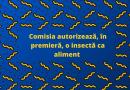 Decizie istorică în Europa! Comisia Europeană autorizează utilizarea unei insecte ca aliment
