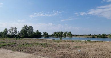 TÂRGOVIȘTE: Se lucrează la un parc întins pe 5 ha în zona Complexului de Natație