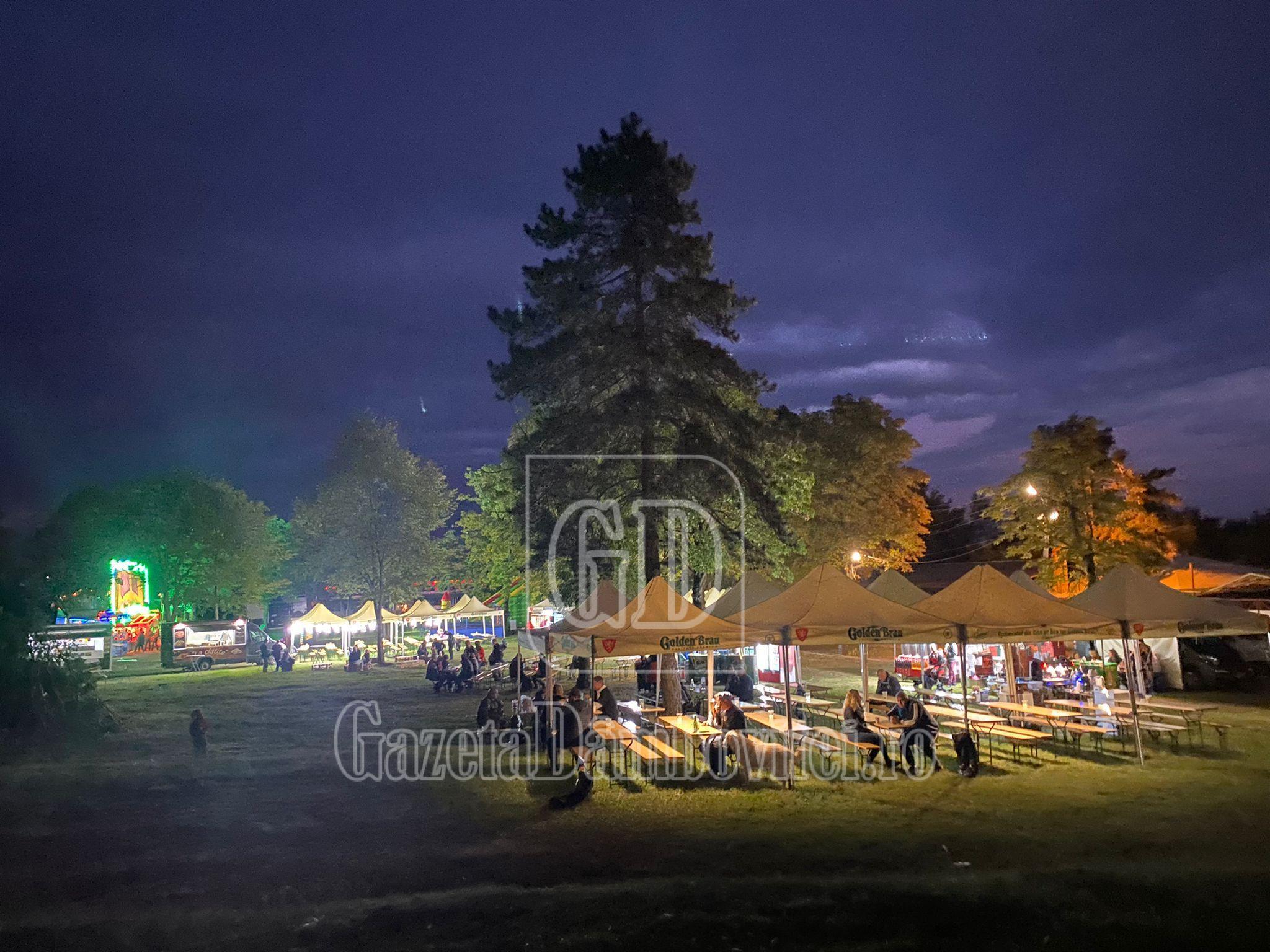 Dan Helciug concertează în această seară la YOUNG VETERANS FEST, la Centrul de Recuperare de la Mănăstirea Dealu