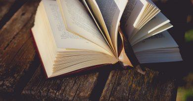 Cele mai intalnite teme din romane: dragoste, razboi, razbunare, tradare, pariuri!