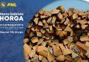 TVA -ul pentru lemnele de foc, redus de la 19, la 5% în Comisia de finanțe a Camerei Deputaților