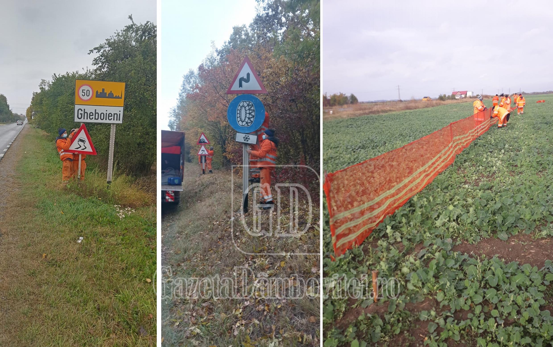 DÂMBOVIȚA: Pregătiri pentru sezonul rece, pe toate drumurile naționale din județ